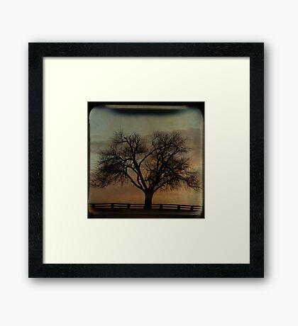 Fenceline TTV Framed Print