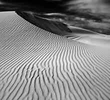 The Simplicity by Anton Gorlin