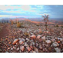 The Larapinta Trail walk Photographic Print
