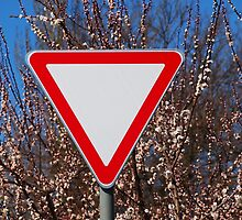 Traffic sign by vladromensky