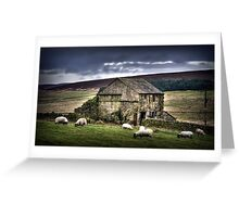 A barn and some sheep Greeting Card