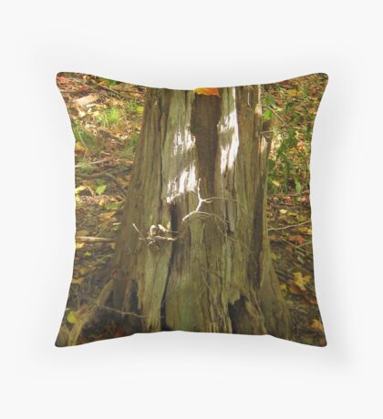 Gentle Warrior Singing Gifts of Love Throw Pillow