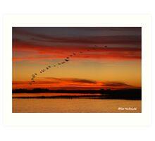 Rock Creek sunset - South Carolina Art Print