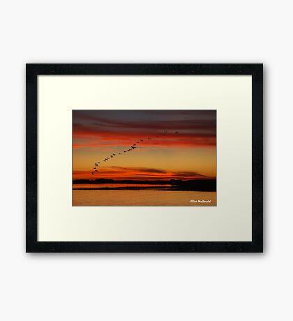Rock Creek sunset - South Carolina Framed Print