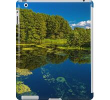 an incredible Ukraine landscape iPad Case/Skin