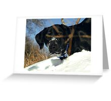 Maggie the Snowplow Greeting Card