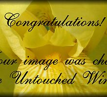 Untouched Winners Banner Challenge by plunder