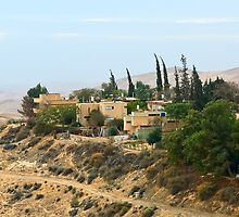 Houses In The Negev Just After Dawn by Michael Redbourn