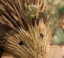 A Well Read Hedgehog by ElyseFradkin