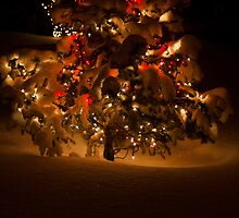 SNOWY CHRISTMAS TREE by rlkstudio