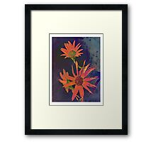 Bold Flower Power Framed Print