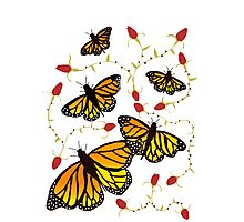 Butterflies and Roses  Photographic Print