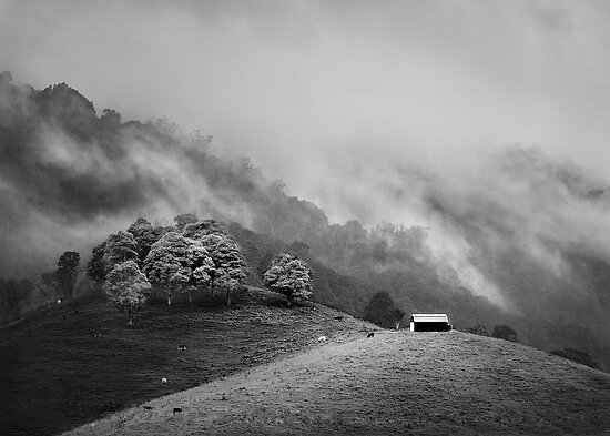 Misty Dayboro Barn by Ben Ryan