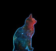 Space cat, Universe, Kosmos, Galaxy, Star by boom-art