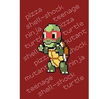 Squirtle Turtle - Raph Photographic Print