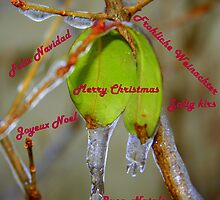 A very Merry Christmas!!  by Laurel Talabere