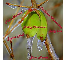 A very Merry Christmas!!  Photographic Print