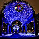 Very Merry Christmas from Boston, MA by LudaNayvelt