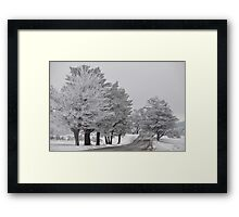 Country Road On Christmas Morning Framed Print