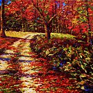 The Autumn Road by sesillie