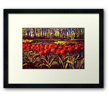 The Red Tulips in Keukenhof Framed Print