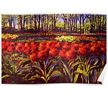 The Red Tulips in Keukenhof Poster