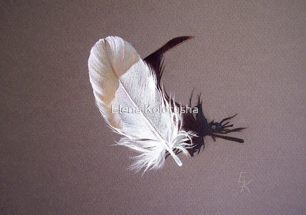 Feather & shadow #1 by Elena Kolotusha