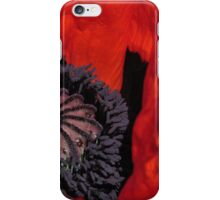 Giant Poppy Centre Point iPhone Case/Skin
