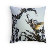Oh Pine Nuts!! Cocky Capers 5! Throw Pillow
