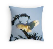 Falling! Without a shadow of doubt!  Cocky Capers 3 Throw Pillow