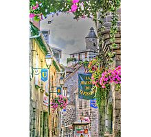 Aubusson Photographic Print