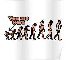 Evolution humor Poster