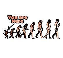 Evolution humor Photographic Print