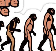 Evolution humor Sticker