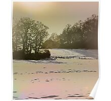 Late afternoon sun on snow Poster
