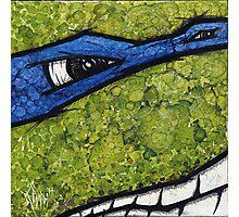 Leonardo of Teenage Mutant Ninja Turtles Photographic Print