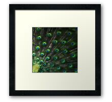 Being Watched Framed Print