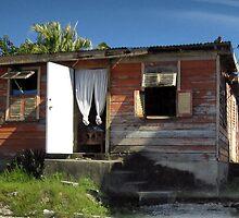 an unbelievable Barbados landscape by beautifulscenes