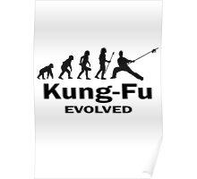 Kung- Fu Evolved Poster