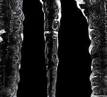 Icicles by Cadence Gamache