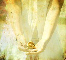 She Sells Seashells II Squared by Tia Allor-Bailey