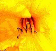 floral 1655 by Chuck Landskroner