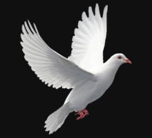 Dove of Peace Tee by Pam Moore