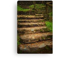 Goals Are Achieved One Step At A Time Canvas Print