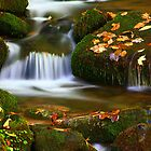 MOSSY CASCADE* by Chuck Wickham