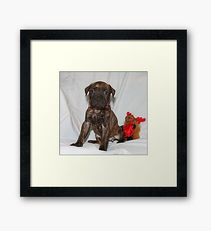 I KNOW I am CUTE You Got A Problem With That? 09 Framed Print