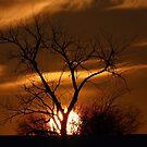Fireball Sunset by Jim Cumming