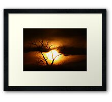 Gloom - Tree Framed Print