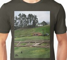 a beautiful Ecuador