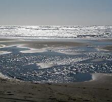 Ocean Beach San Francisco by stevenjay
